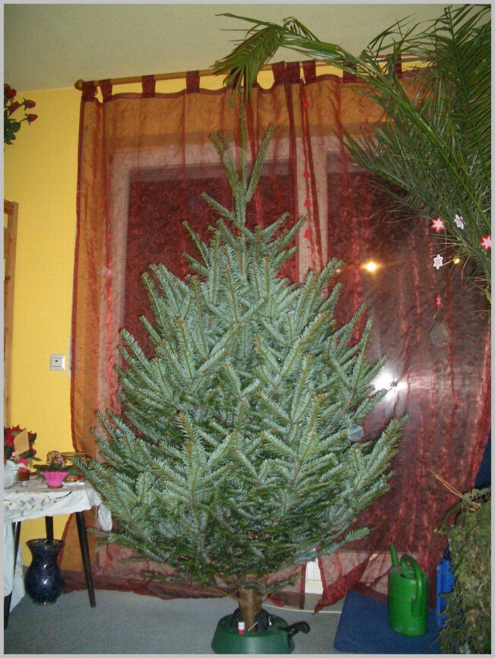 201012_Weihnachtsbaum001