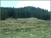 201210_moped_suedtirol_42
