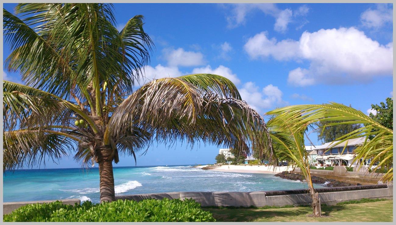 201401_Karibik_Barbados_1